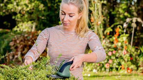 Neue Bosch Strauch- und Grasschere EasyShear