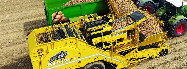 Erfolgreiches Wachstum der Kartoffel-Erntetechnik bei Ropa