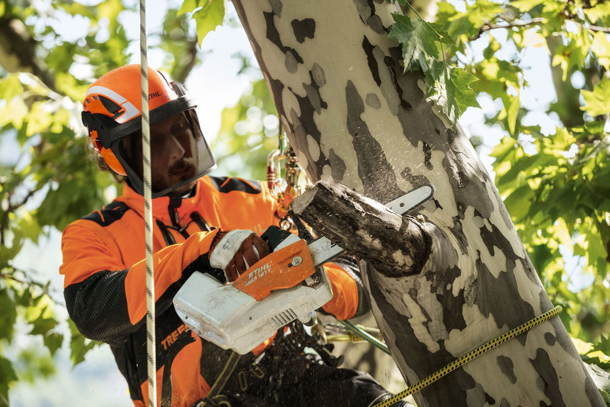 Stihl Advance X-Climb |copyright: Stihl