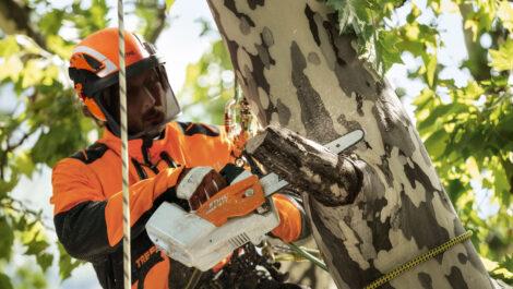 Stihl-Helmset für Einsätze im Baum und am Boden