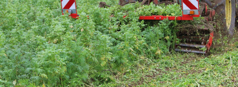 Knoche präsentiert Maschine zur Restpflanzenzerkleinerung