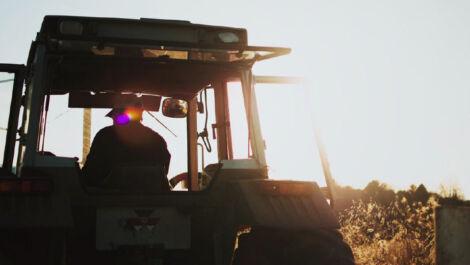 LandBauTechnik-Bundesverband: Konjunktur weiter positiv